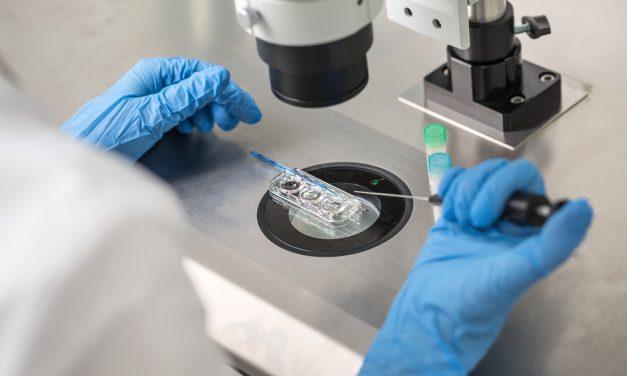 Metoda in vitro – poznaj najważniejsze fakty