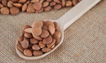 Pestki moreli – czy warto włączyć je do swojej diety jako suplement?